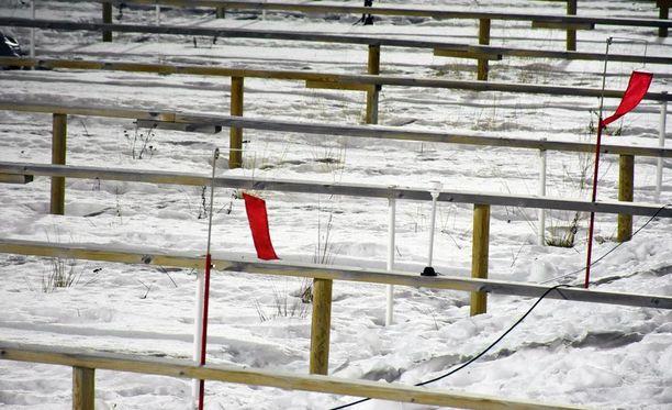 Tuulta on Ilmatieteenlaitoksen mukaan 6-7 metriä sekunnissa ja se tulee lännestä tai luoteesta.