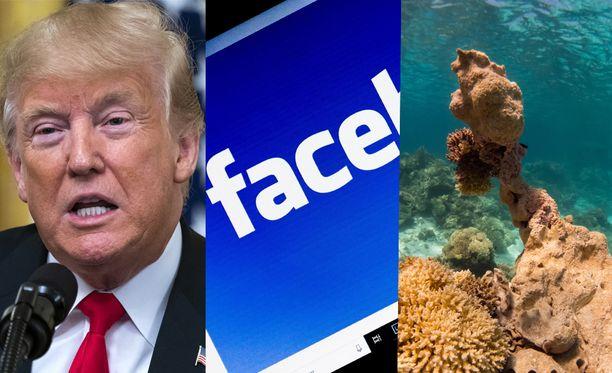Donald Trump, Facebook ja ilmastonmuutos herättävät keskustelua vuonna 2019, sanovat asiantuntijat.