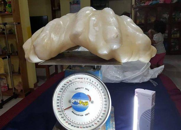 Helmi on näytteillä Puerto Princesan kaupungintalolla.