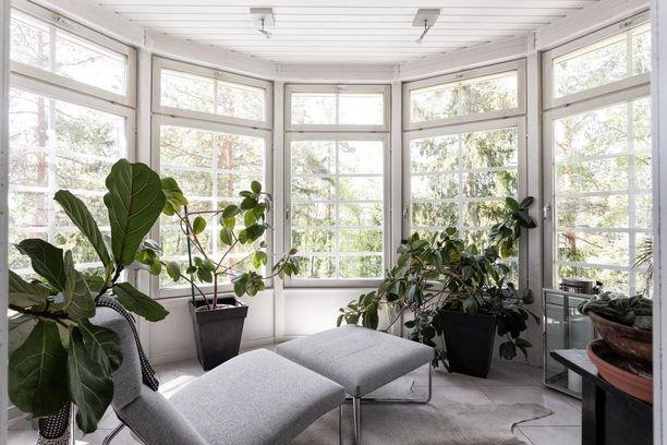 Erkkerin ikkunoista avautuva metsämaisema on tuotu myös asunnon sisälle. Kasvit ovat tässä koko sisustuksen juju.