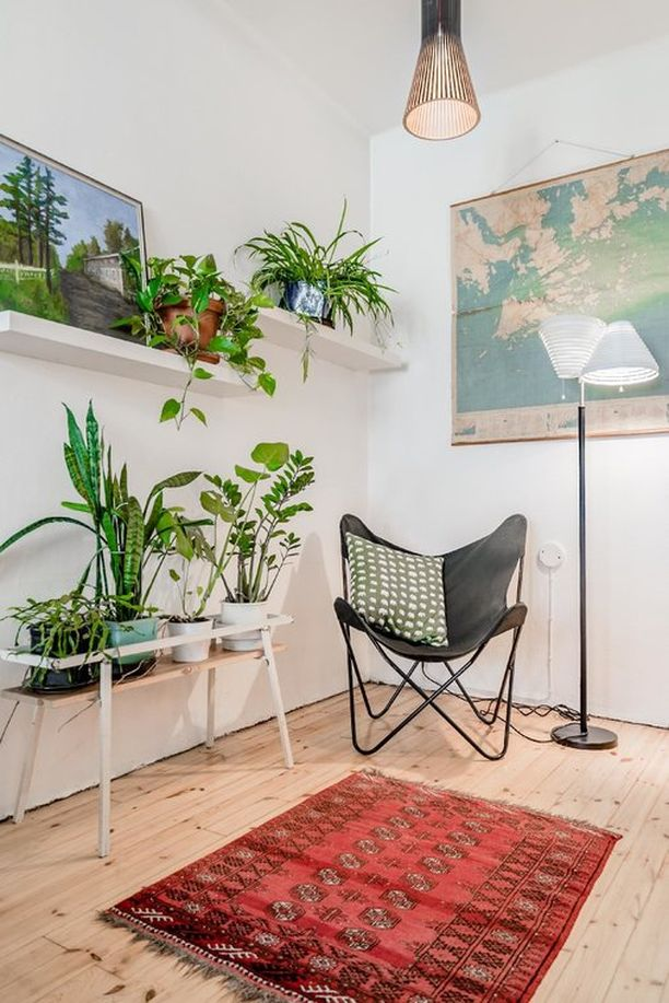 Tämä olohuoneen nurkkaus on sisustettu viherkasvien avulla pieneksi keitaaksi. Kahteen eri tasoon sijoitetut viherkasvit täyttävät huoneen kulman ja tuovat viidakkotunnelmaa. Näin pimeään kulmaan kannattaa valita kasvit tarkkaan. Varjossa pärjäävät hyvin esimerkiksi tuonenkielo, herttaköynnösvehka, huonearalia ja pesäraunioinen.