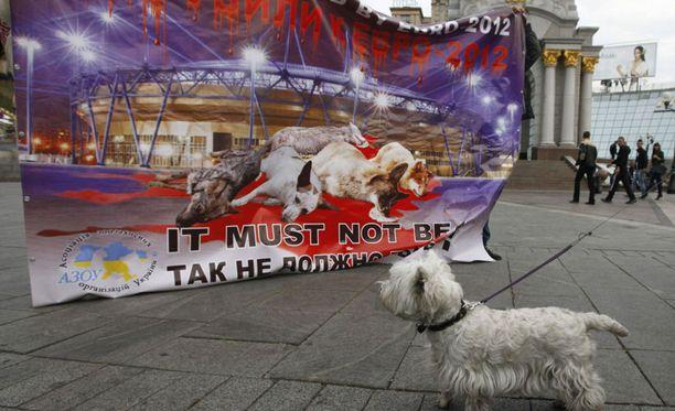 Tessu katselee koirien lahtaamisen kieltävää julistettä Kiovassa.