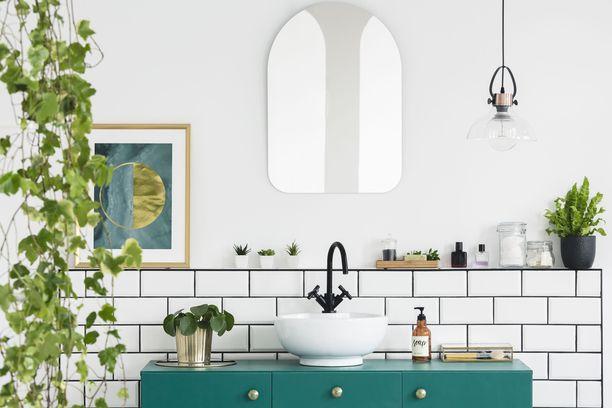 Huonekasvit sopivat täydellisesti kylpyhuoneeseen. Niiden avulla teet kylpyhuoneestasi rentouttavan keitaan.