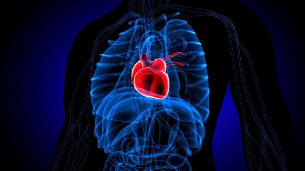 Alkoholin runsas juominen on sydänterveydelle riski.