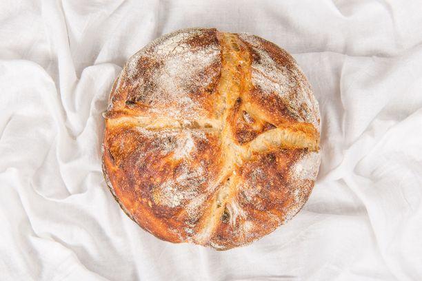 Juureen leivotut hapanleivät ovat olleet keväällä suosittuja.