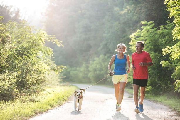 Fyysisesti aktiivisten ihmisten aivot työskentelevät tehokkaammin. Liikunnalla voi myös hidastaa aivojen ikääntymistä.