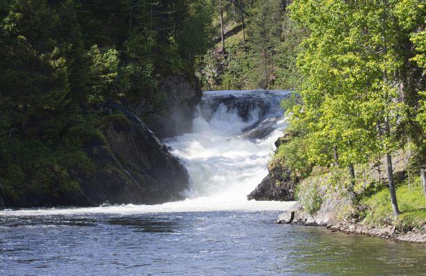 Ehkä eniten vastustajat pelkäävät vesistövaikutuksia Kitkajokeen. Joen tunnetuimpia nähtävyyksiä on Jyrävän putous.