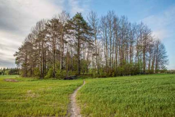 Kaarinan Ravattulan kylässä Aurajoen varrella sijaitsee matalalla kummulla Ristimäen kirkkomaa.