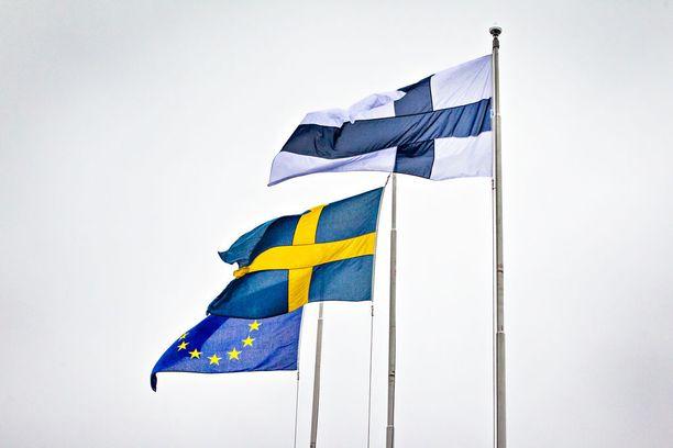 Suomi toimii ensi vuoden jälkimmäisellä puoliskolla EU:n puheenjohtajamaana, mikä aiheuttaa tarpeen enintään 220 henkilötyövuotta vastaavan määräaikaisen lisähenkilöstön palkkausmenoille.