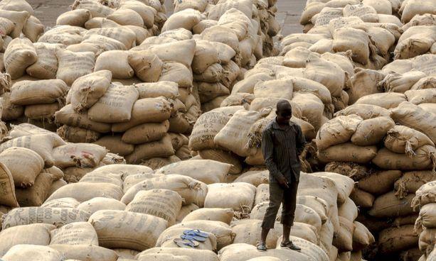 Länsimaihin kuljetetustaan odottavaa kaakaota San-Pédron satamakaupungissa Norsunluurannikolla.