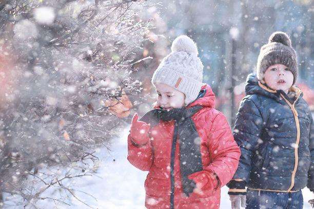 Päivälämpötilat laskevat ensi viikon aluksi tämän perjantain lukemista jopa 5–10 astetta. Kuvituskuva.