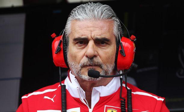 Tämä herra hehkutti Sebastian Vettelin suoritusta.