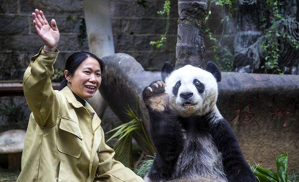 Basi vietti eläintarhassa lähes koko elämänsä.