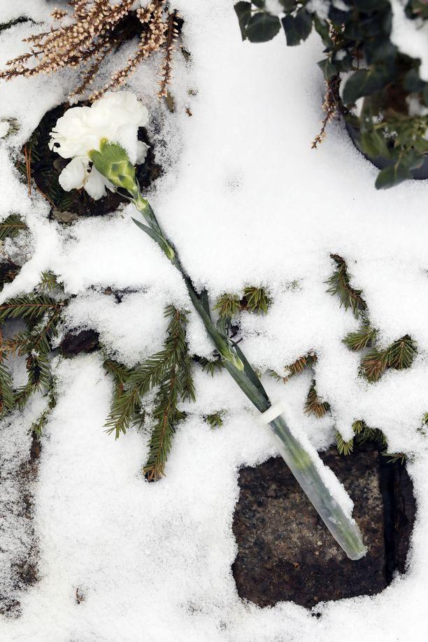 Yksinäinen valkoinen neilikka symboloi rakkautta. Myös saattoväki muisti Nykästä siunaustilaisuudessa valkoisella neilikalla Pia-lesken toiveesta.
