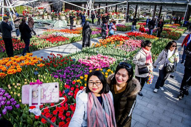 Keukenhofin kukkapenkit ja myyntipisteet ovat suosittuja kuvauskohteita - sekä selfie-kuvien taustoja.