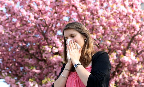 Allergiasiedätyshoitojen määrä on kasvanut uuden allergiaohjelman myötä jo 30 prosenttia.