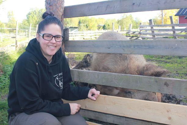 Marjo Saarimaa sanoo, etttä minipossut antavat omistajilleen paljon. Hänen hoidossaan on myös täysikasvuinen sika Pulla.
