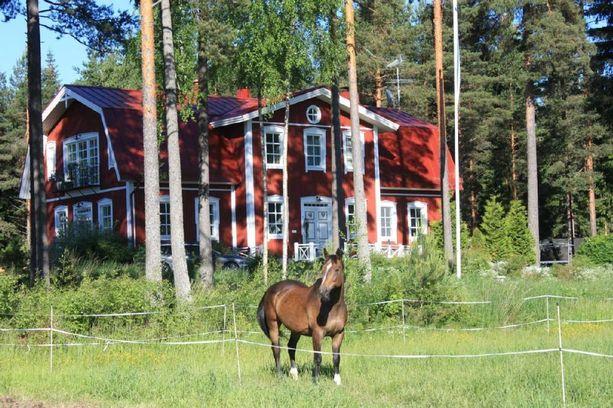 Tämä hevostila sijaitsee Ypäjällä.