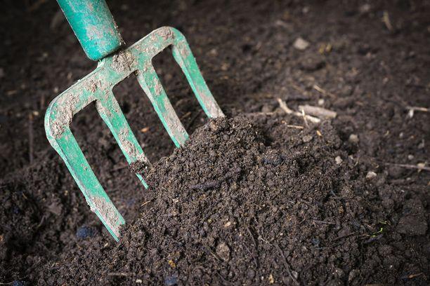 Maltti on valttia: kerralla ei puutarhassa tarvitse saada kaikkea valmiiksi.