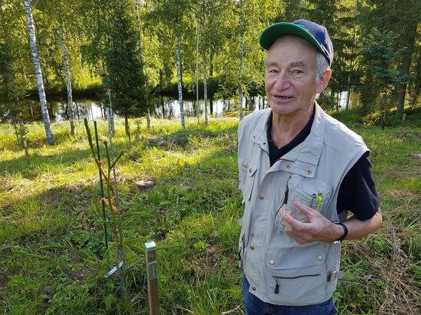 Pertti Terävä on eläkkeellä, mutta erilaisia töitä, muun muassa metsätöitä, tulee tehtyä paljon. Taustalla virtaa Hiitolanjoki, joka laskee Laatokkaan.