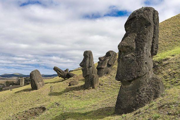 Patsaat on veistetty yhdestä kivestä ja ne painavat tyypillisesti noin 20 tonnia.
