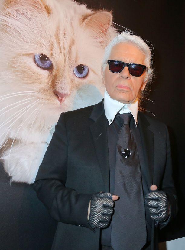 Karl Lagerfeld on sanonut, että mikäli kissan kanssa voisi mennä naimisiin, menisi hän Choupetten kanssa naimisiin.