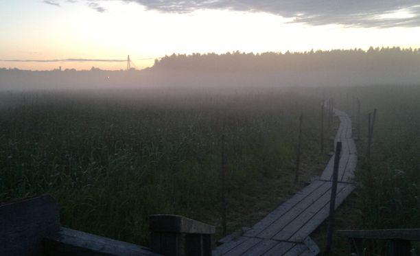 Helsingin Lammassaaren pitkospuita hädin tuskin erotti sumun keskeltä.
