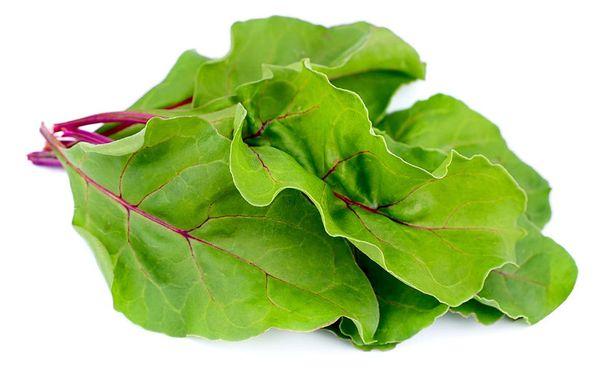 Sekä juurikkaan että punajuuren vihreät lehdet sopivat erinomaisesti salaatteihin.