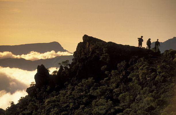 Réunionin luonto on vehreää runsaiden sateiden ansiosta.