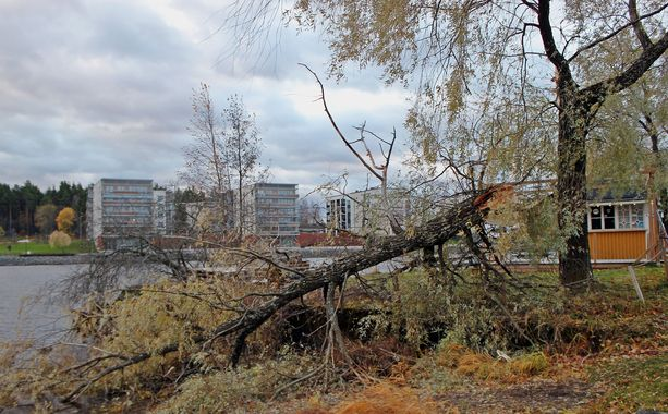 Myrskytuuli puhalsi myös Joensuussa.