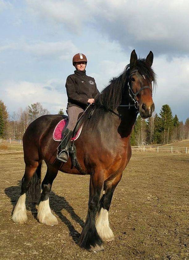 Virpi Oksasen omistaman hevosen säkäkorkeus on yli 190 senttiä.