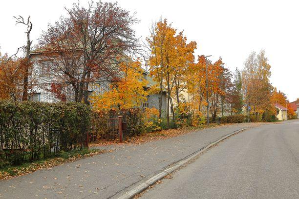Itä-Suomi voi olla torstaina lämmön tyyssija. Kuva Joensuusta.