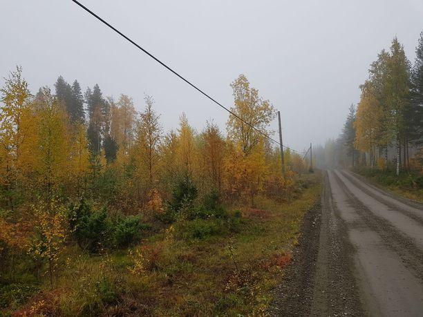 Reino Määttä ja Hilkka Oikarinen katosivat Savukoskella erämaahan. He asuvat Ylikiimingissä.