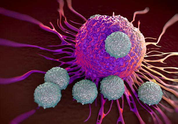 Yleensä elimistömme kykenee voittamaan syöpäsolujen hyökkäykset.