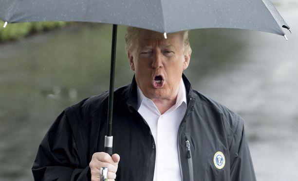 Donald Trumpista on taiteilijan mukaan helppo tehdä karikatyyrejä, mutta vaikea tehdä imartelevia maalauksia.