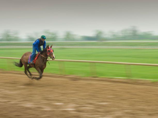 Kentuckyn laukkakisoista karkasi viime lauantaina hevonen. Kuva ei liityt tapaukseen.