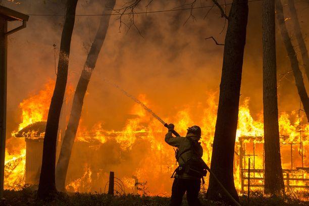 Palomiehet ovat yrittäneet saada maastopaloa aisoihin.