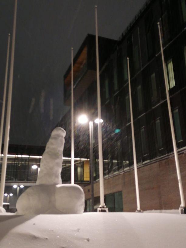 Kirkkonummen kunnantalon edustalle ilmestynyt lumipenis on hämmästyttänyt ja riemastuttanut alueen asukkaita.
