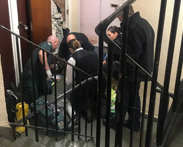 BBC:n kuvausryhmä oli juuri haastatellut Perivoitosta, kun tämän oma koira hyökkäsi isäntänsä kimppuun.