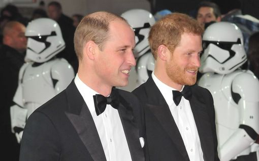 Prinssit Harry ja William ovat sentään yhdestä asiasta samaa mieltä: prinsessa Dianan tulevasta patsaasta