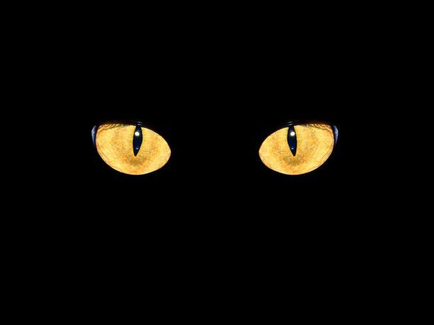 Pimeässä pelätään sitä, mitä ei nähdä.