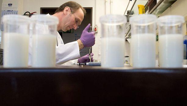 Tutkija teki kokeita raakamaidolle Saksan Hannoverissa lauantaina. Lähes tuhat saksalaista maitotilaa asetettiin myyntikieltoon sen jälkeen, kun rutiinitarkastuksessa lehmänmaidosta paljastui hieman liian suuria määriä syöpävaaralliseksi luokiteltua ainetta.