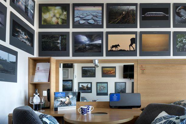 Vuoden luontokuvilla omistettu huone on kuin pieni valokuvataidegalleria.
