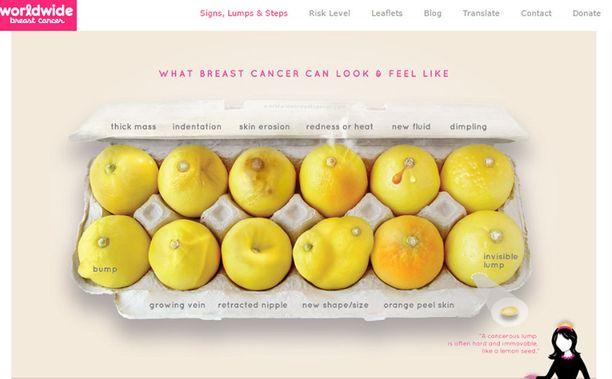 Kuvassa olevat 12 sitruunaa kuvastavat rintojen muutoksia, joihin kannattaa reagoida.