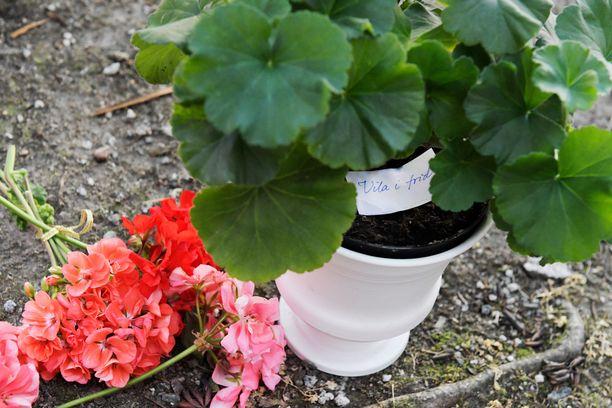 Eric Torellin ampumispaikalle tuotiin kukkia muistoksi.