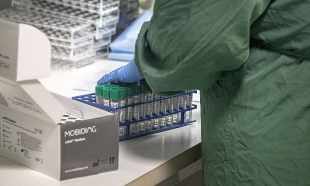 Uutta virusmuunnosta löydettiin ensimmäisen kerran Suomesta helmikuun puolivälissä. Virusta havaittiin Etelä-Suomessa koronapotilaalta otetusta näytteestä.