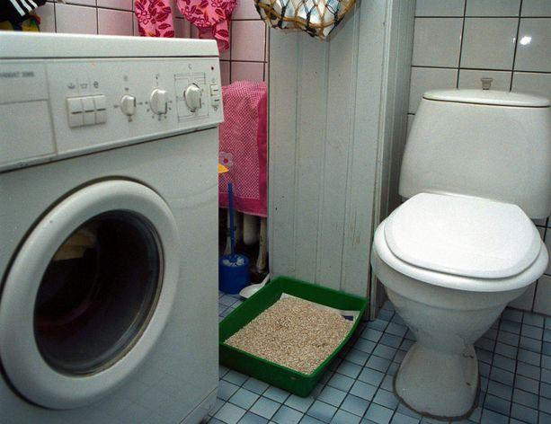 Nainen päästi tuntemattoman miehen käyttämään asuntonsa vessaa ja joutui tämän raiskaamaksi. (Kuvituskuva)