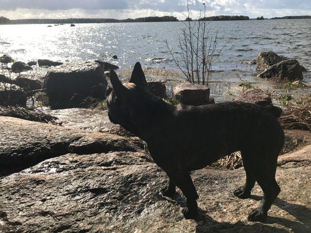 Pitkät lenkit koirakaveri Hilman kanssa ovat Janitalle tärkeä henkireikä.