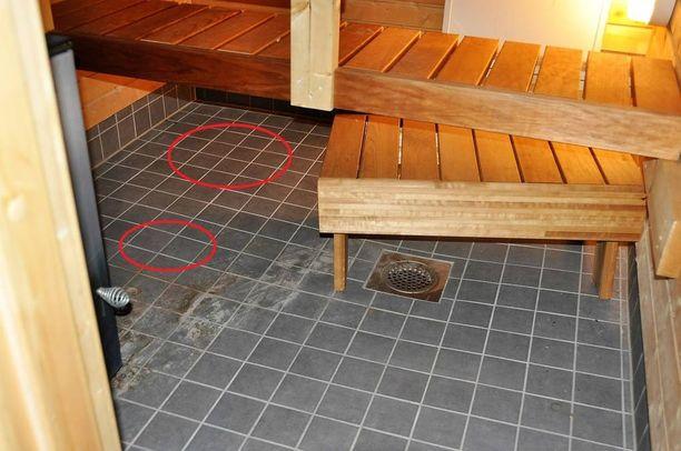 Homekoira merkitsi saunassa ja kylpyhuoneissa kohtia.