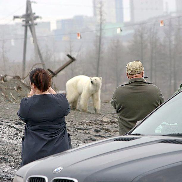 Norilsk on monille suomalaisillekin tuttu, muun muassa Outokumpu ja Rauma-Repola rakensivat sinne 1970-luvulla nikkeli- ja kuparisulattoja.